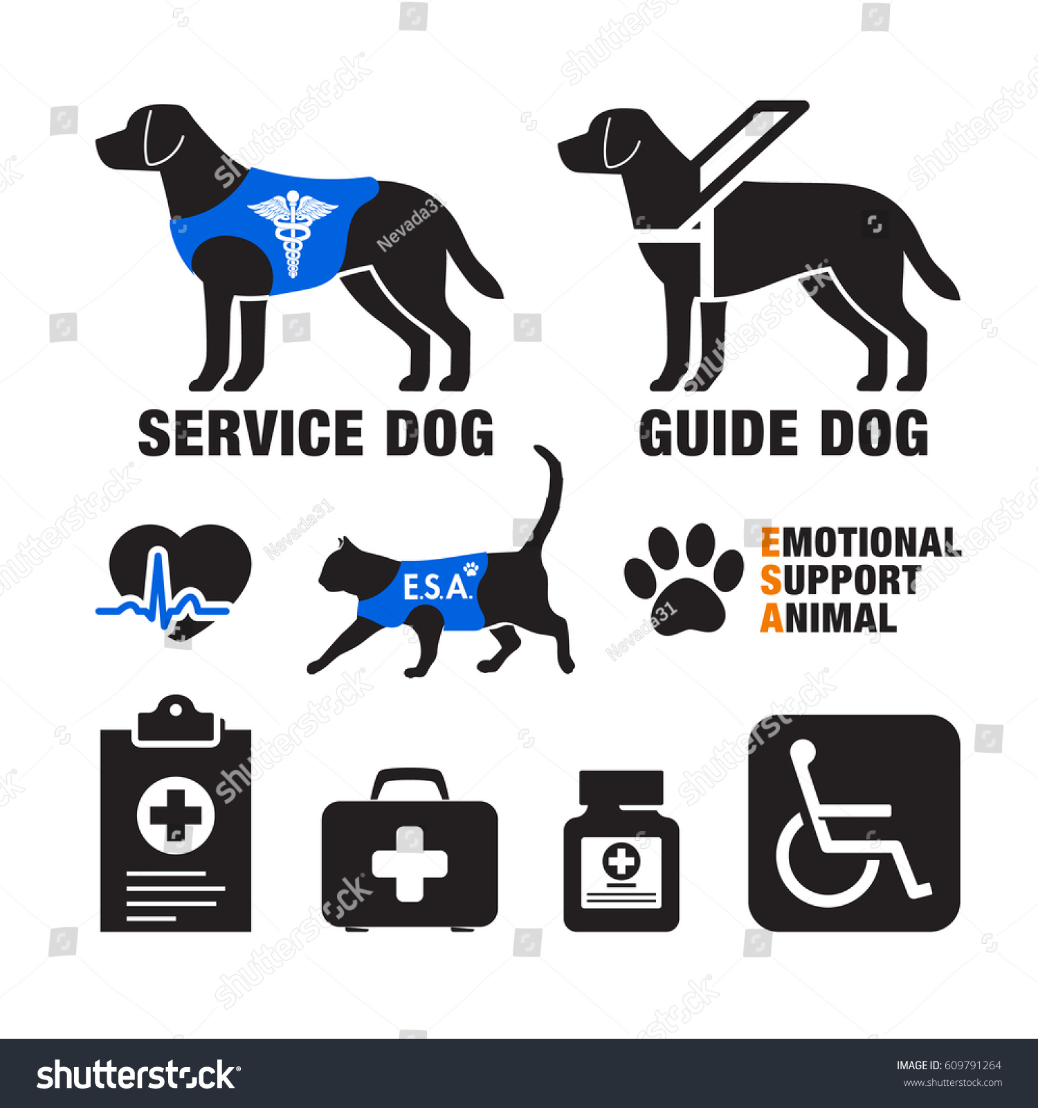 Offical Site For Service Dog