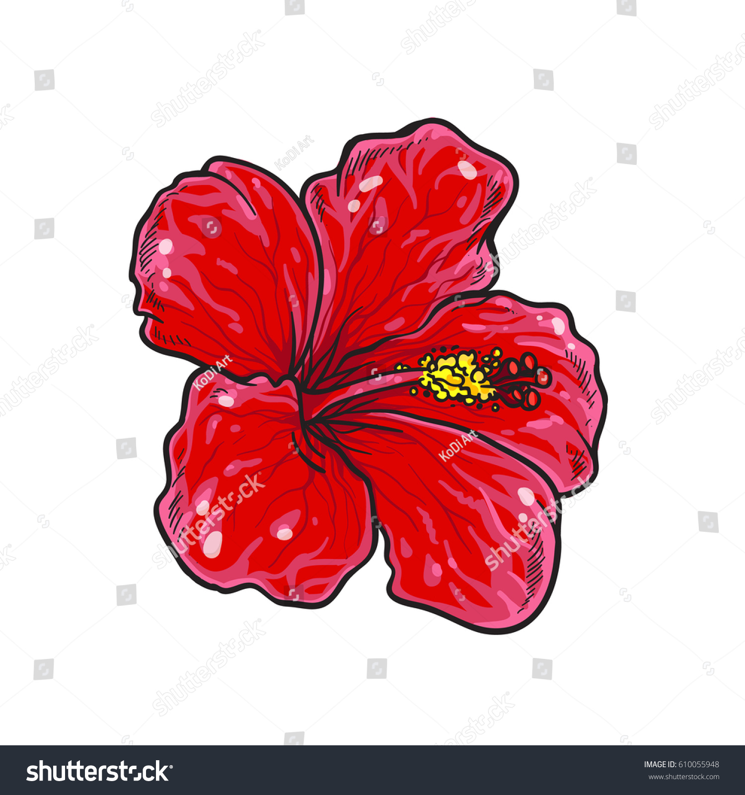 Vector Single Red Hibiscus Flower Colorful Stock Vector Royalty