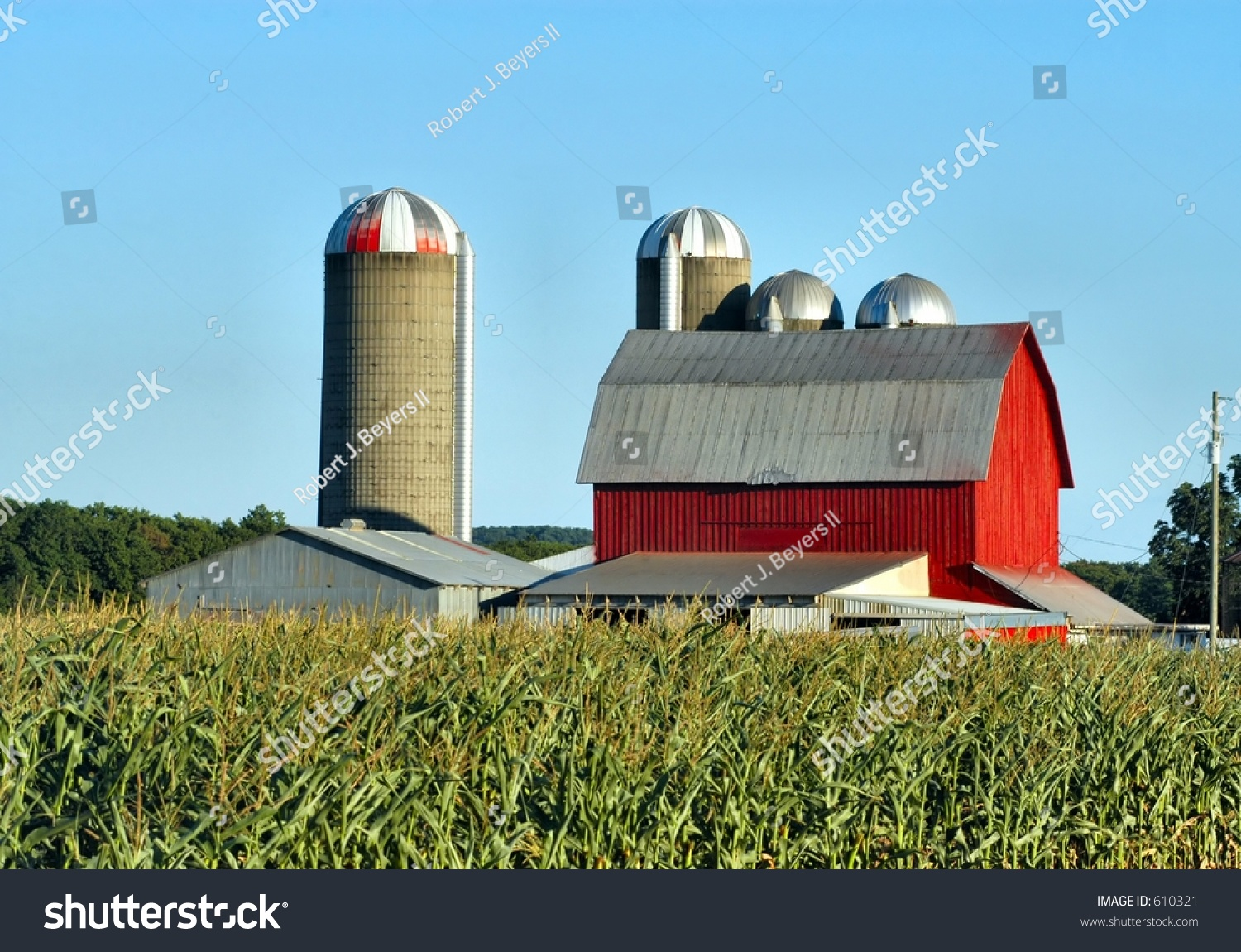 barn and silos in a corn field stock photo 610321
