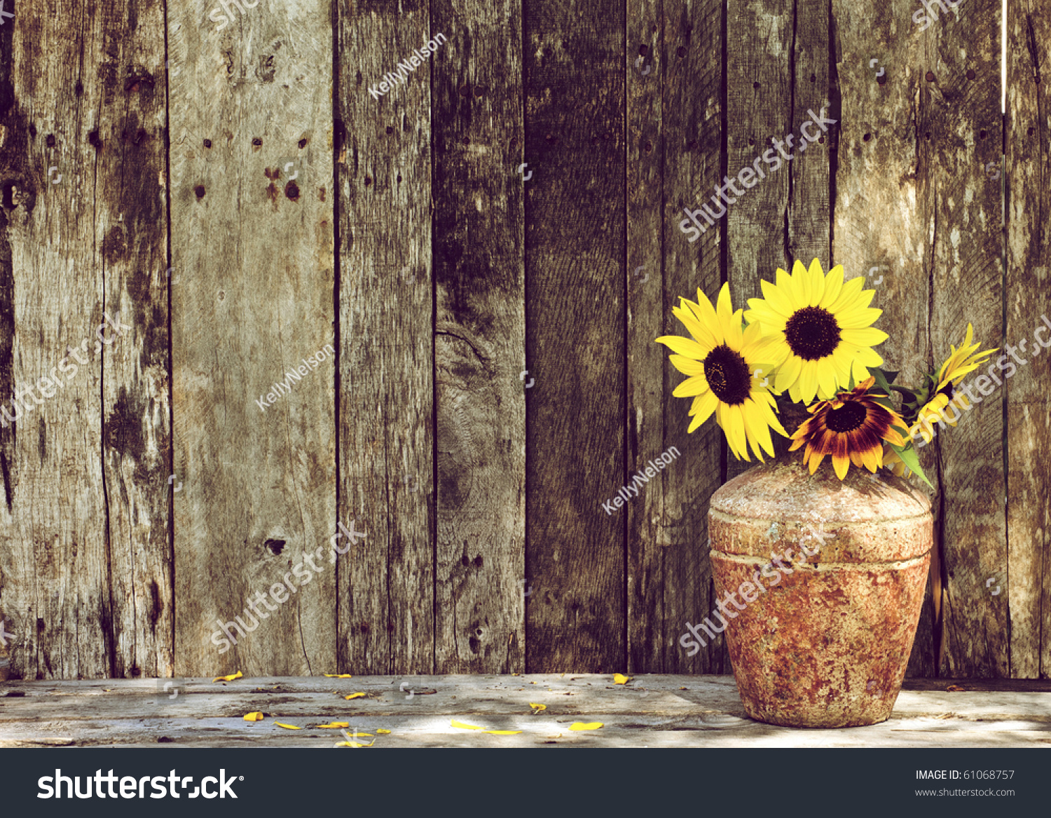 Sunflowers In A Vase On A Rustic Grunge Background With
