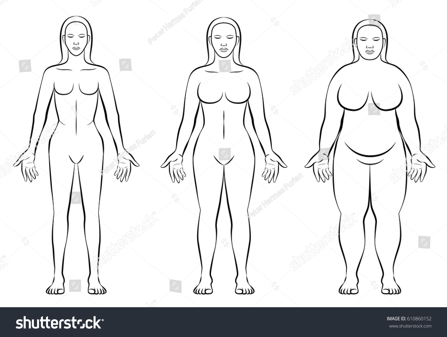 Female Body Constitution Types Thin Normal Stock Vector Royalty