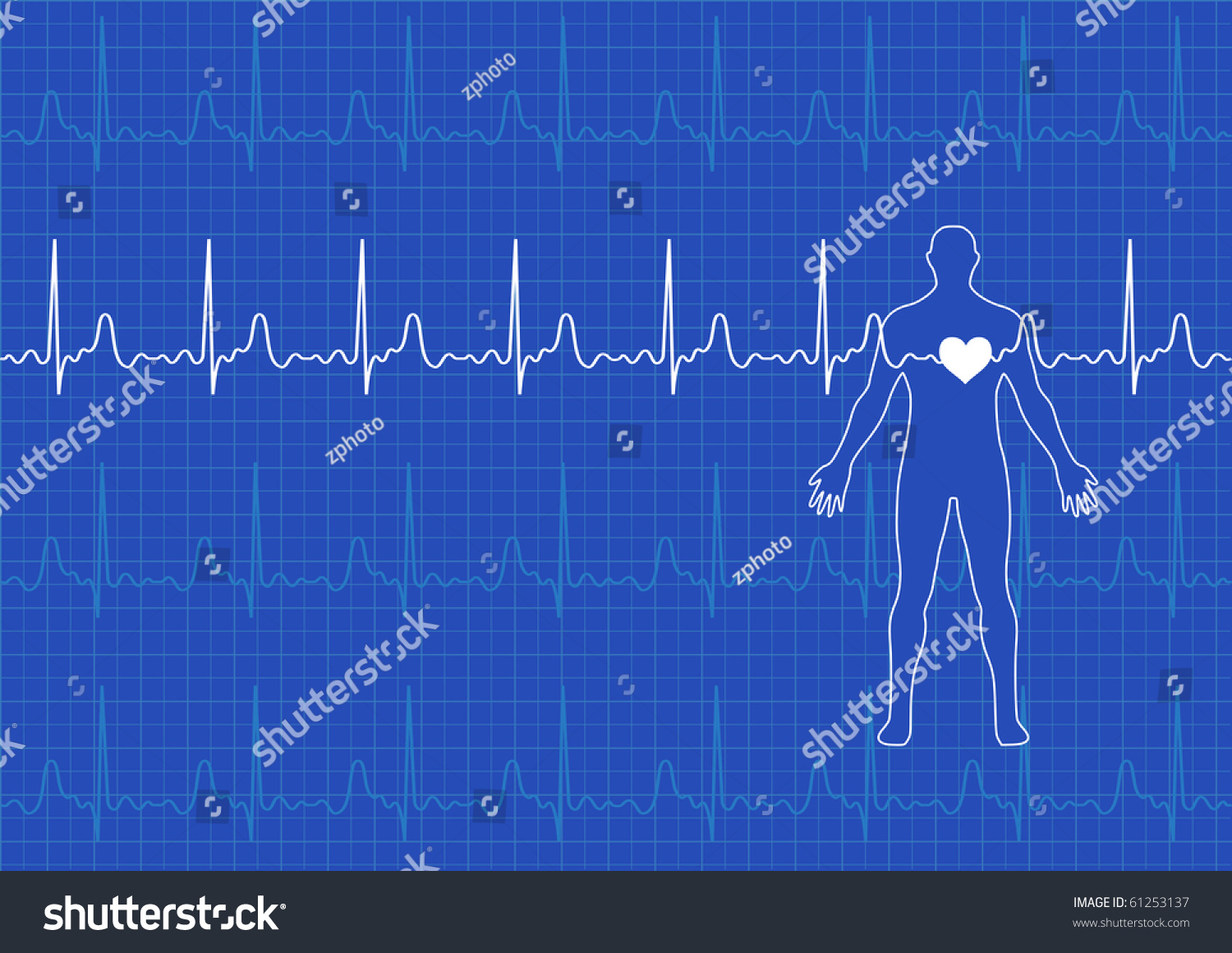 electrical activity of the heart pdf