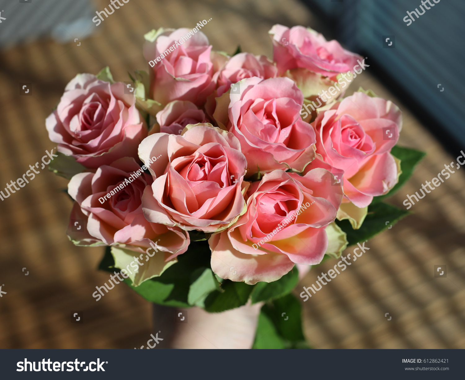 Beautiful Light Pink Roses Reminds Me Stock Photo Safe To Use