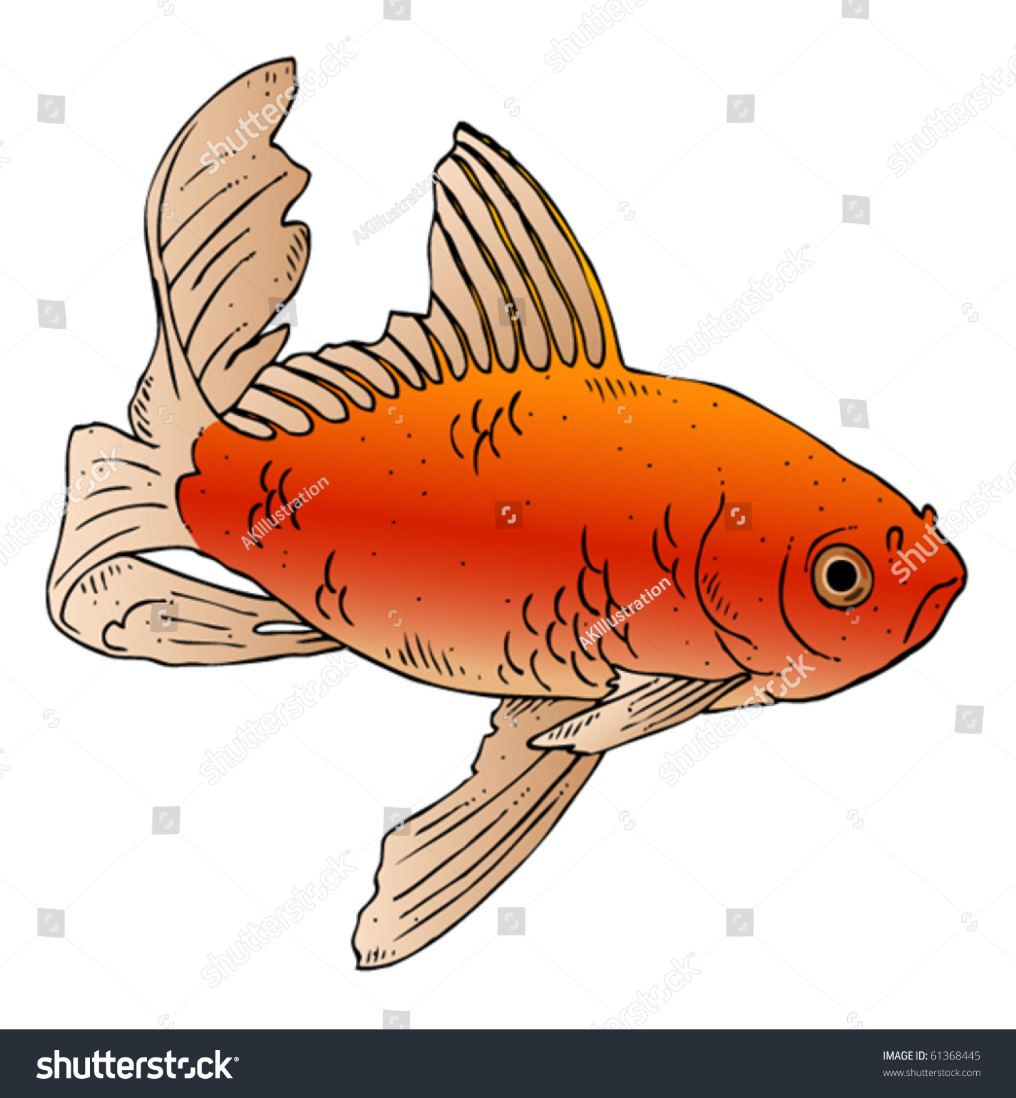 Vector Ink Drawing Swimming Goldfish Stock Vector 61368445 ...