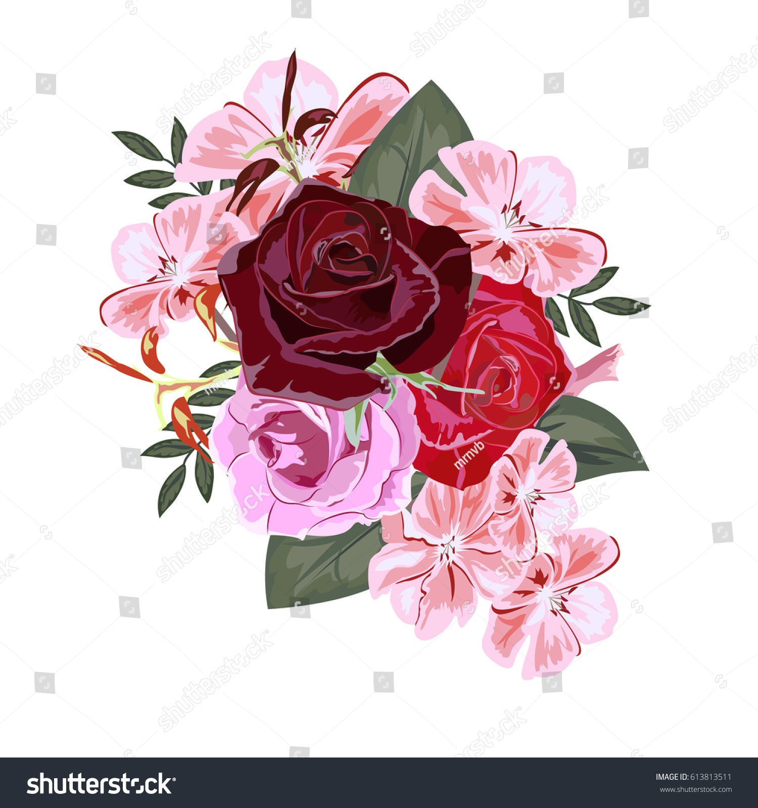 Bouquet Red Roses Pink Geranium Decor Stock Vector (Royalty Free ...