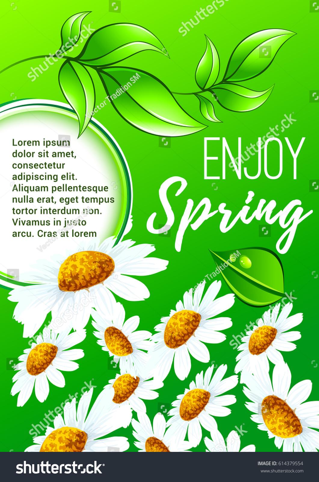 Spring Flower Cartoon Poster White Flowers Stock Vector Royalty