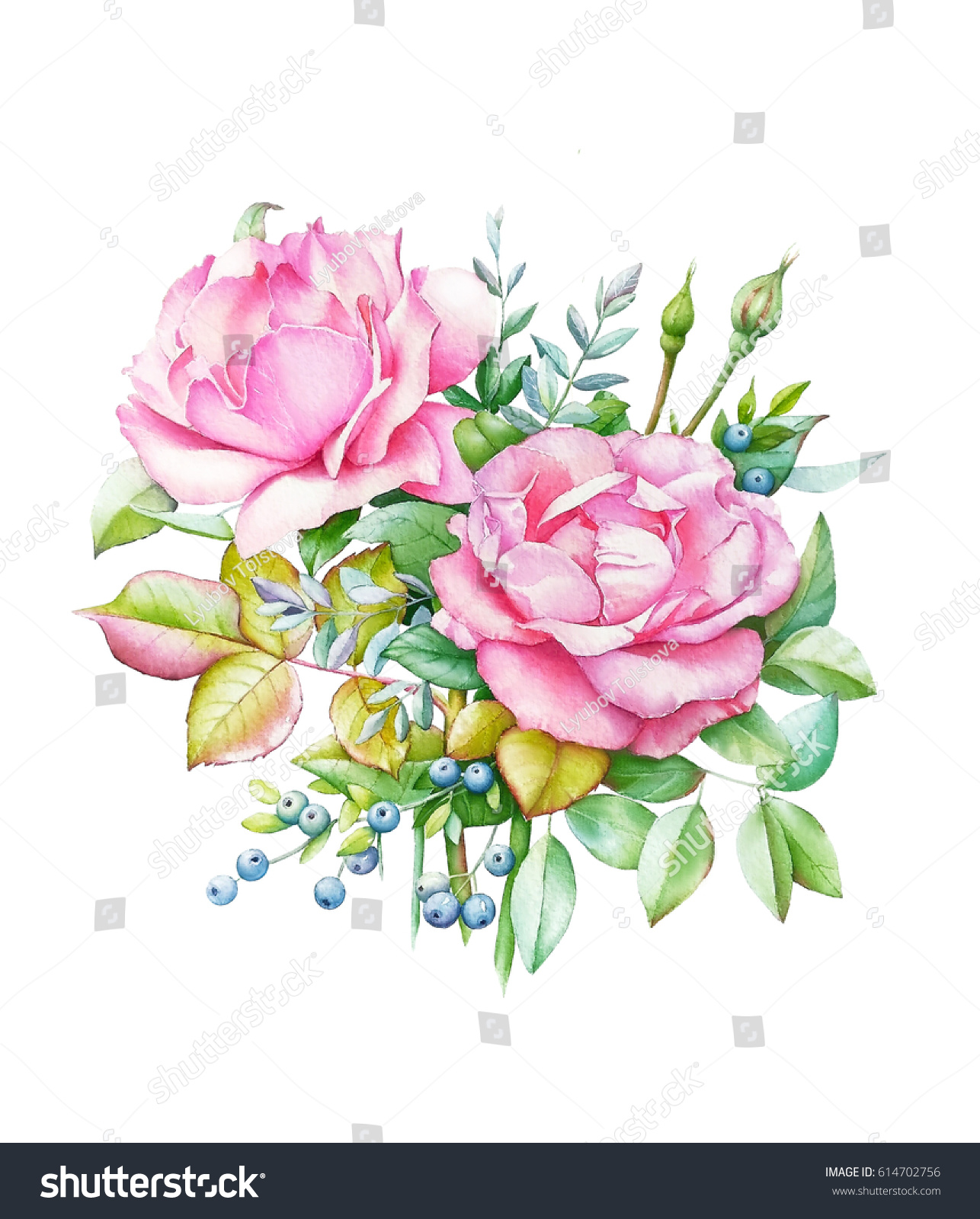 Watercolor illustration bouquet two pink roses stock illustration watercolor illustration of bouquet with two pink roses and buds green leaves and blue berries izmirmasajfo
