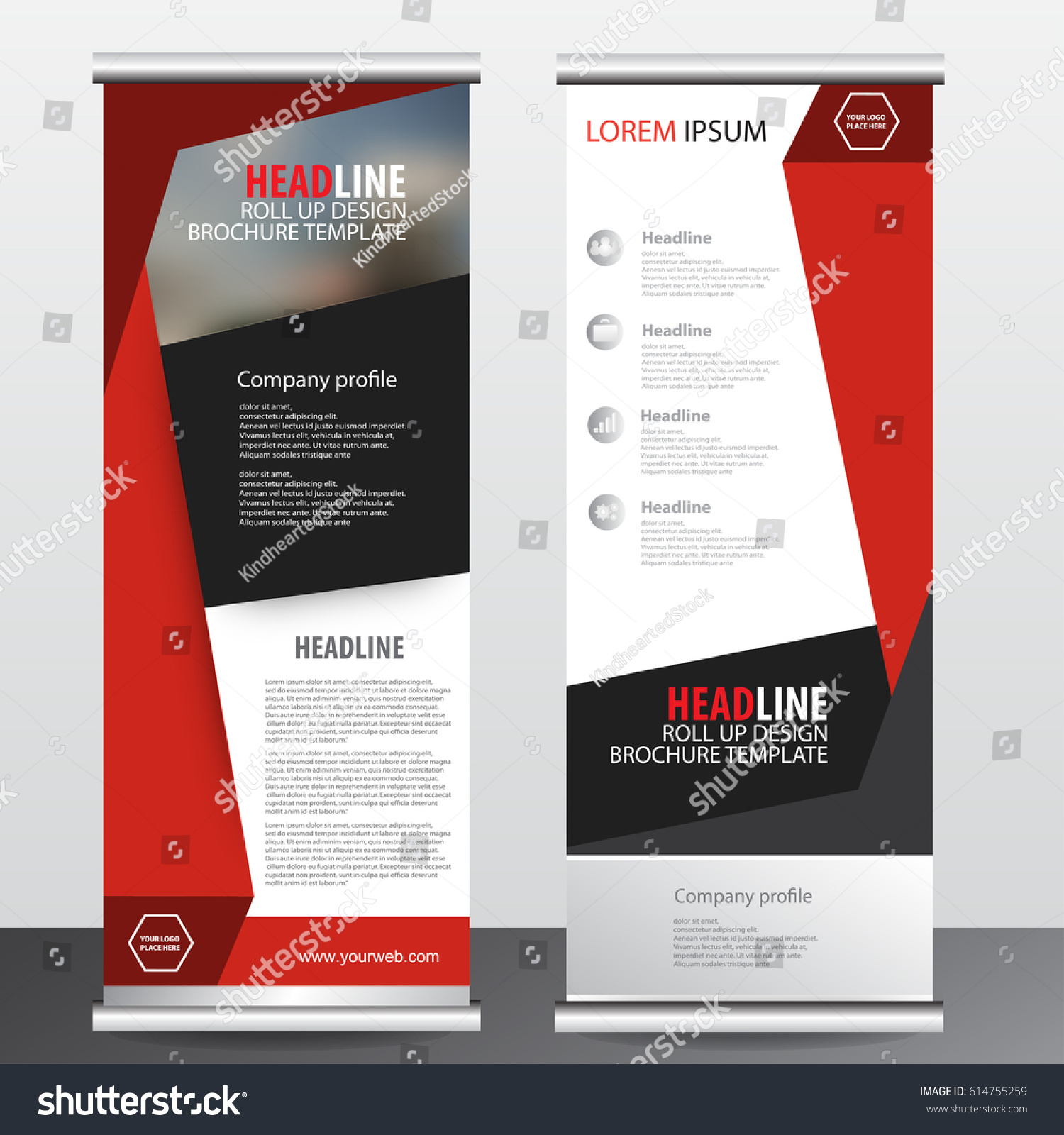 Roll Business Brochure Flyer Banner Design Stock Vector Royalty