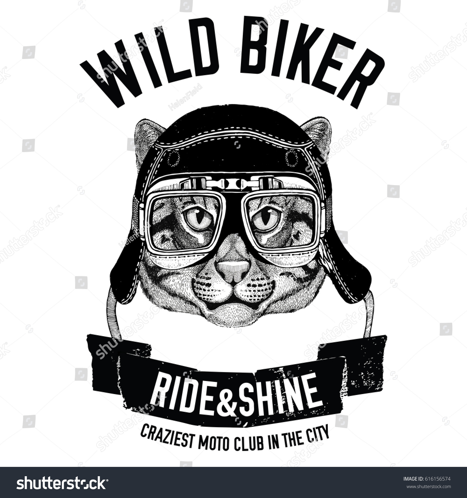 Vintage Images Fishing Cat Tshirt Design Stock Illustration