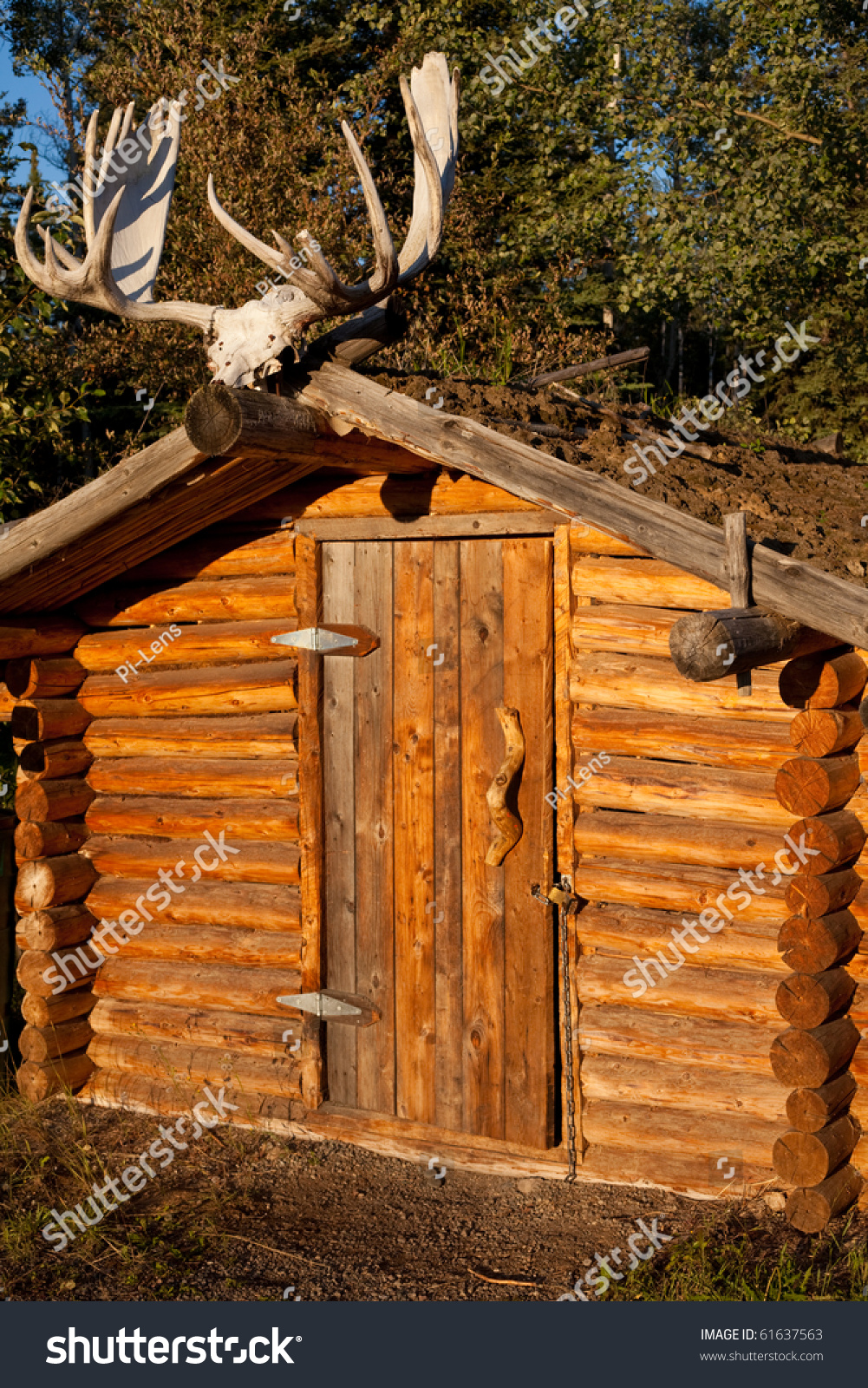 Small log cabin with earth roof and moose skull with for Log cabin gunsmithing
