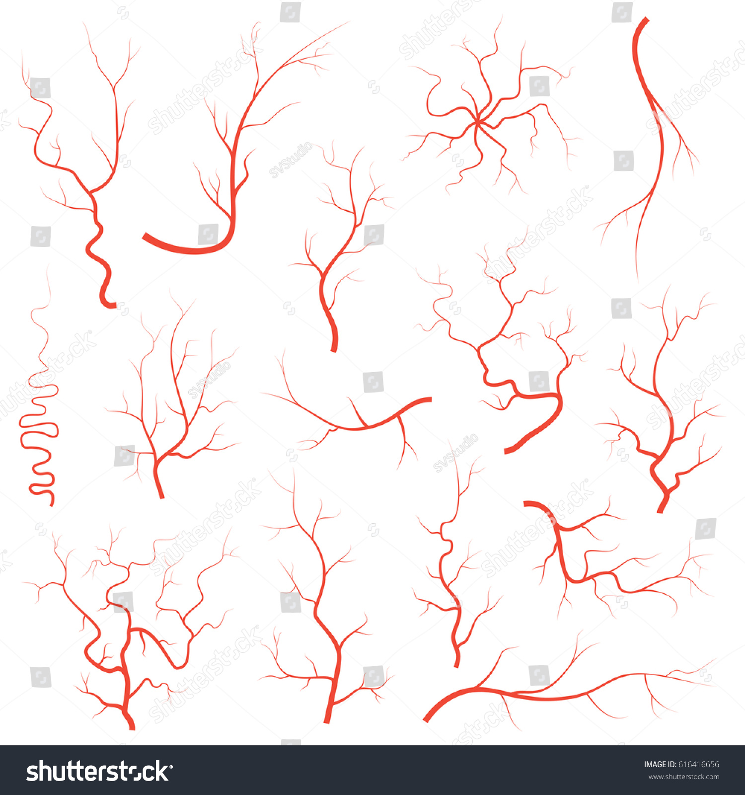 Human Red Eye Veins Set Anatomy Stock Vector Royalty Free