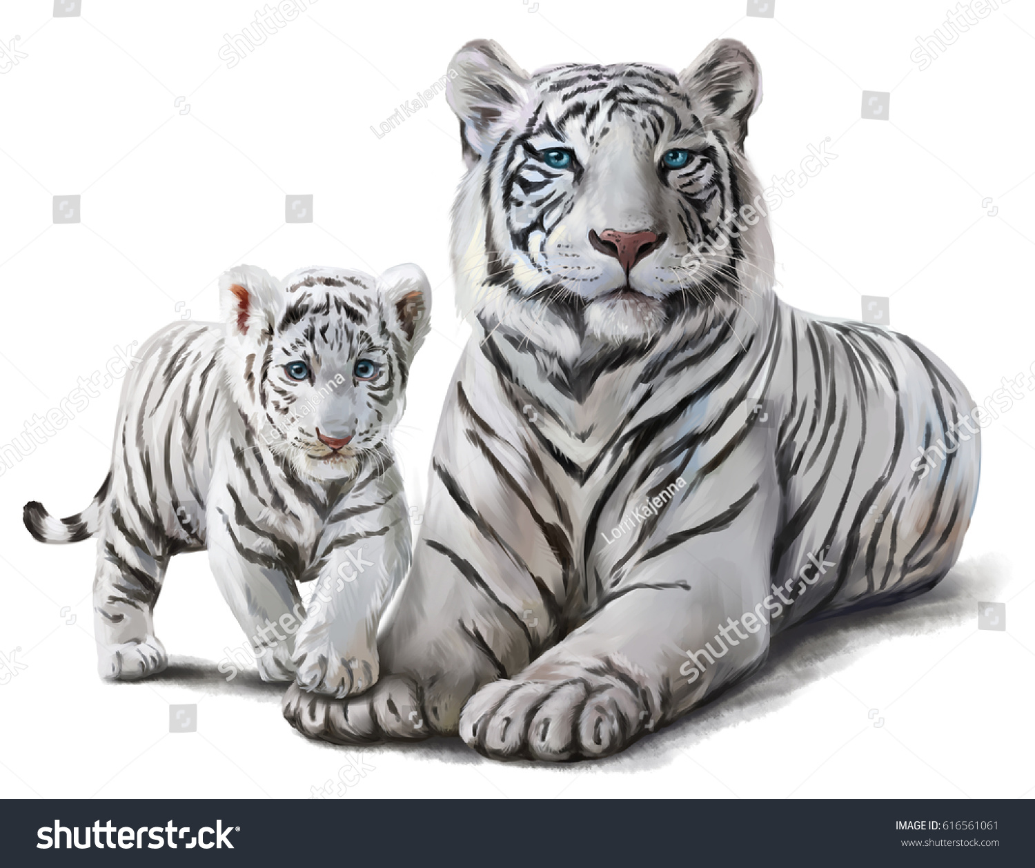 White Tigers Watercolor Painting Stock Illustration