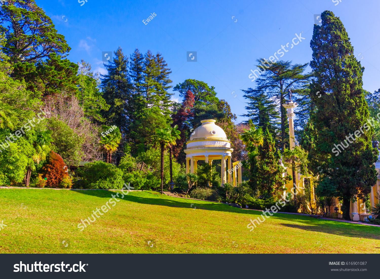 Sochi Arboretum is a museum of nature 25