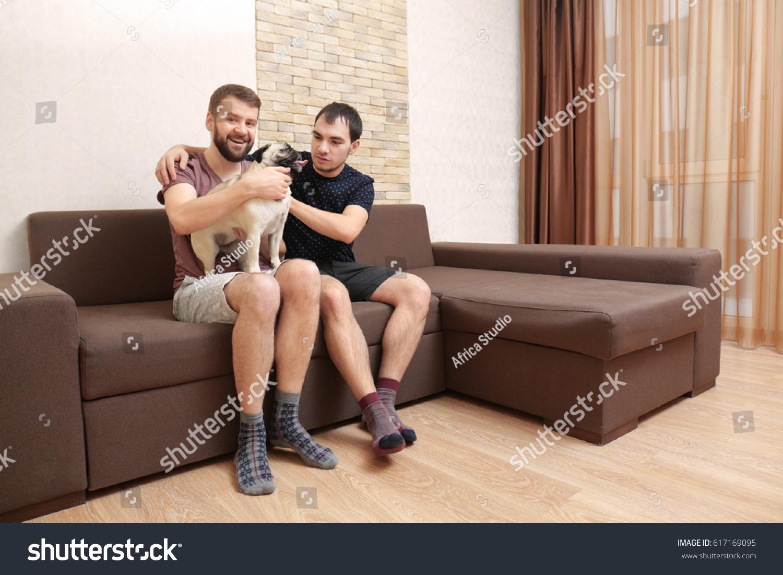 Joyful homo pair enjoying on sofa