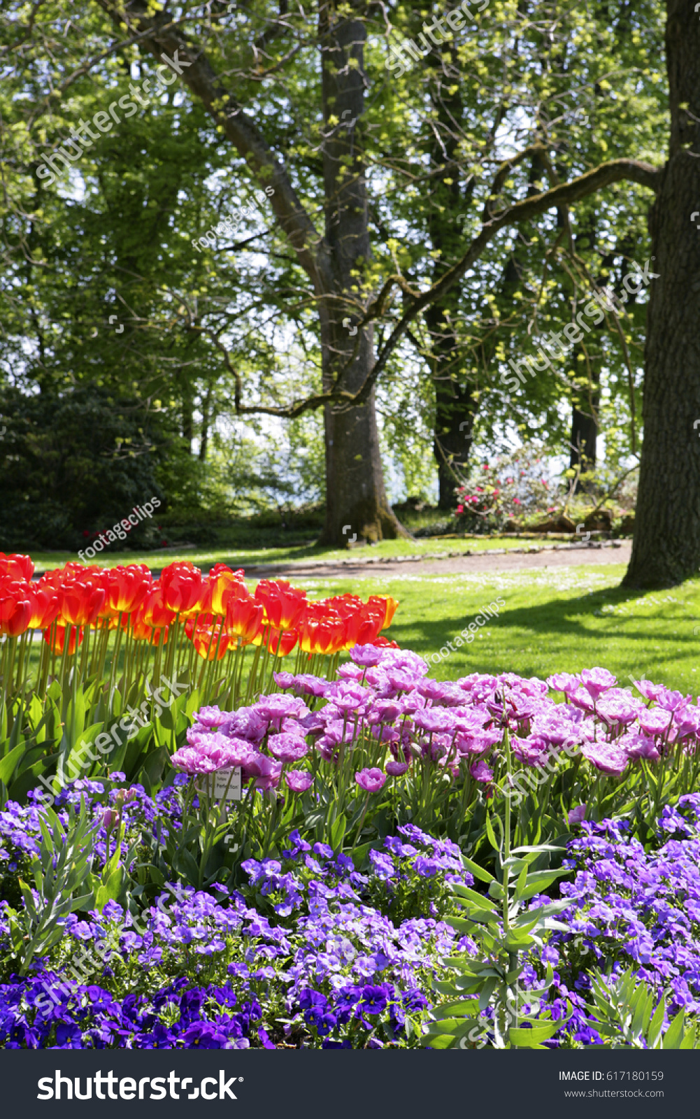 Beautiful Park With Spring Flowers On The Island Of Flowers