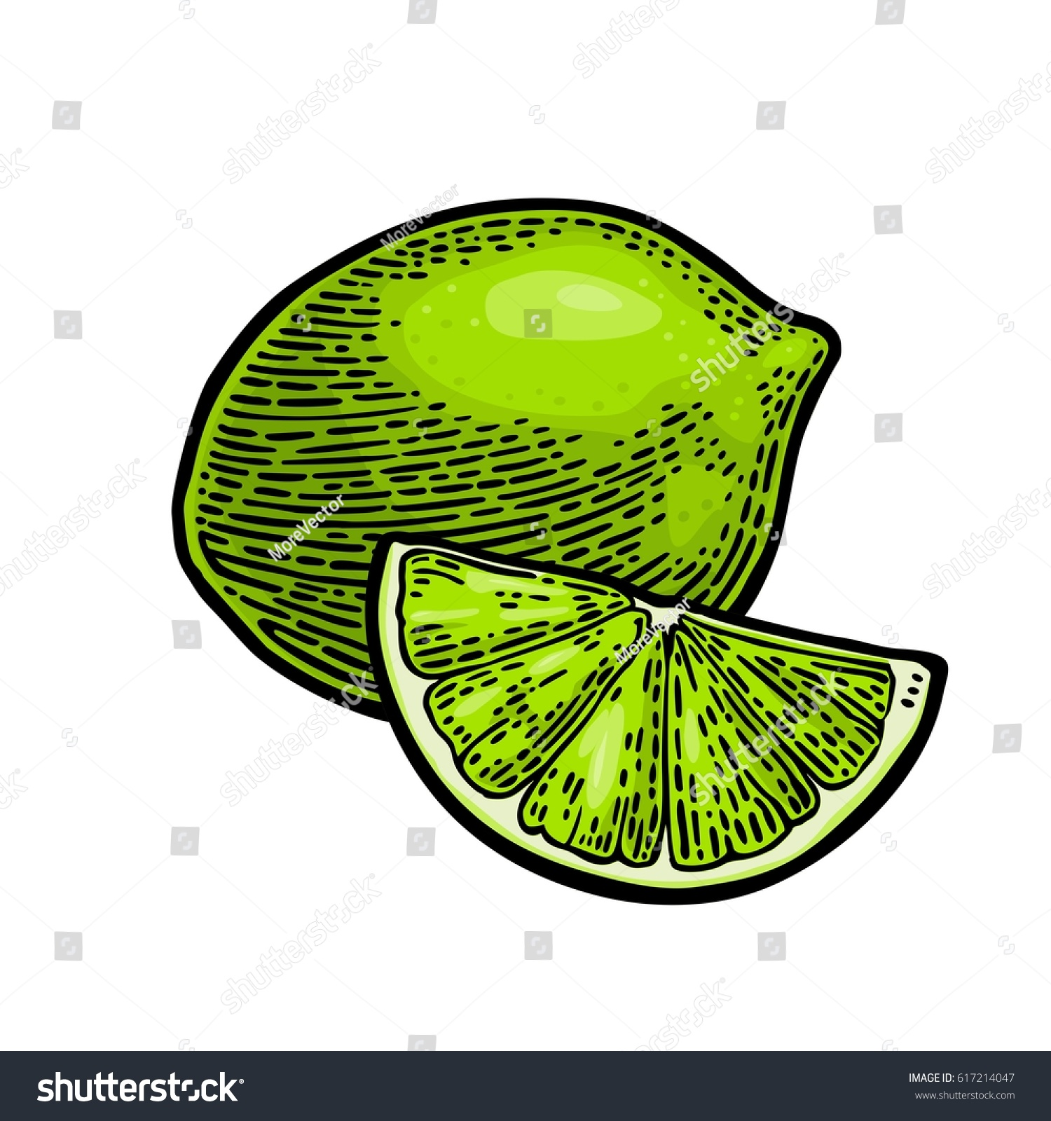Web colors lime - Lime Whole And Slice Vintage Color Vector Engraving Illustration For Label Poster Web Isolated