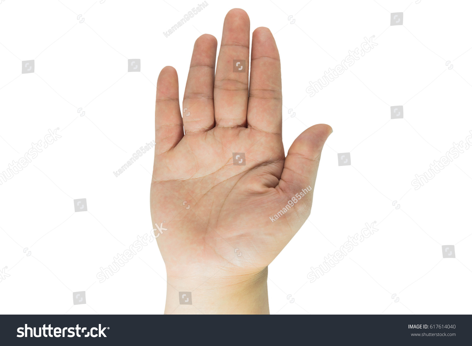 Hands Vital Organs Our Human Body Stock Photo (Royalty Free ...