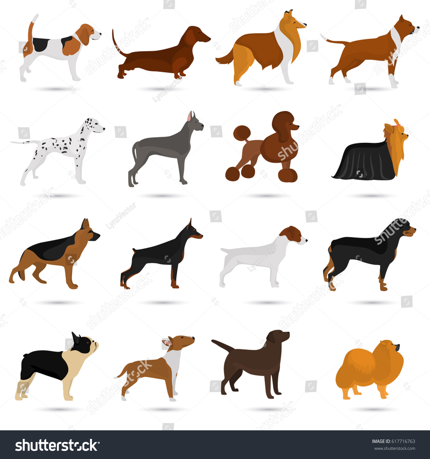Seth Different Breeds Dogs Color Flat Stock Vector (Royalty Free ...