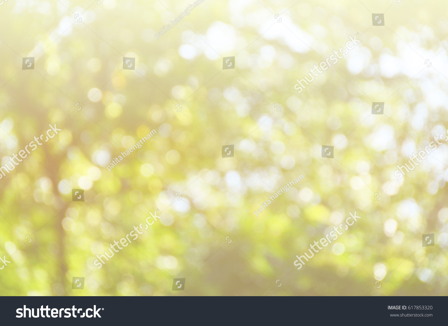 Green Abstract Background Leaf Color Nature Wallpaper Blur Blurred