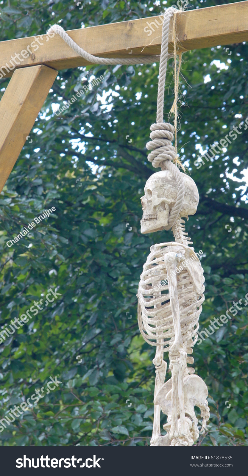 human skeleton hanging on a rope stock photo 61878535   shutterstock
