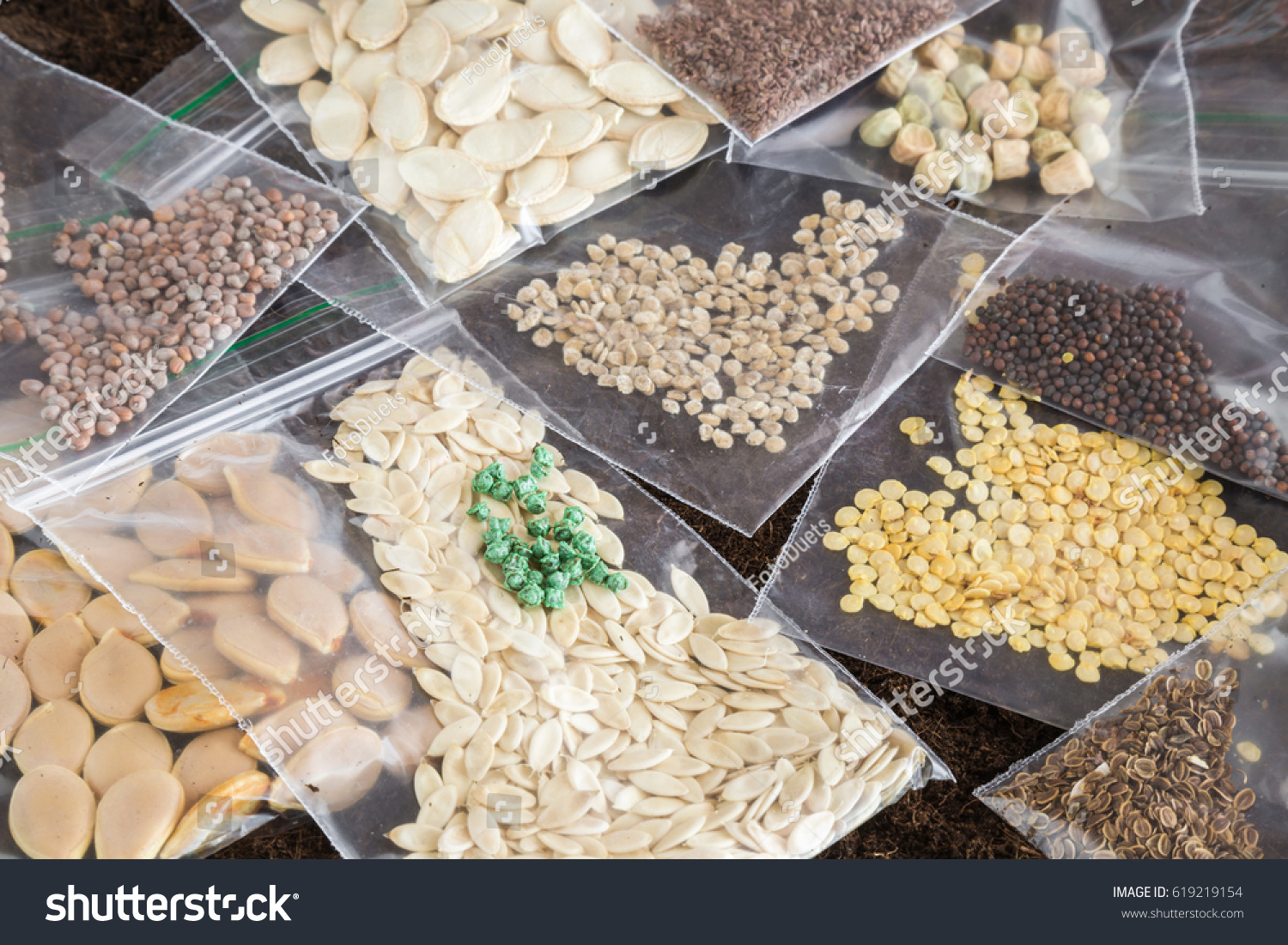 Packets of different seeds. Planting time. Early spring preparations for the garden season. Paprika, tomato, pumpkin, courgette, cabbage, radish, beet, peas, carrot and dill seeds. #619219154