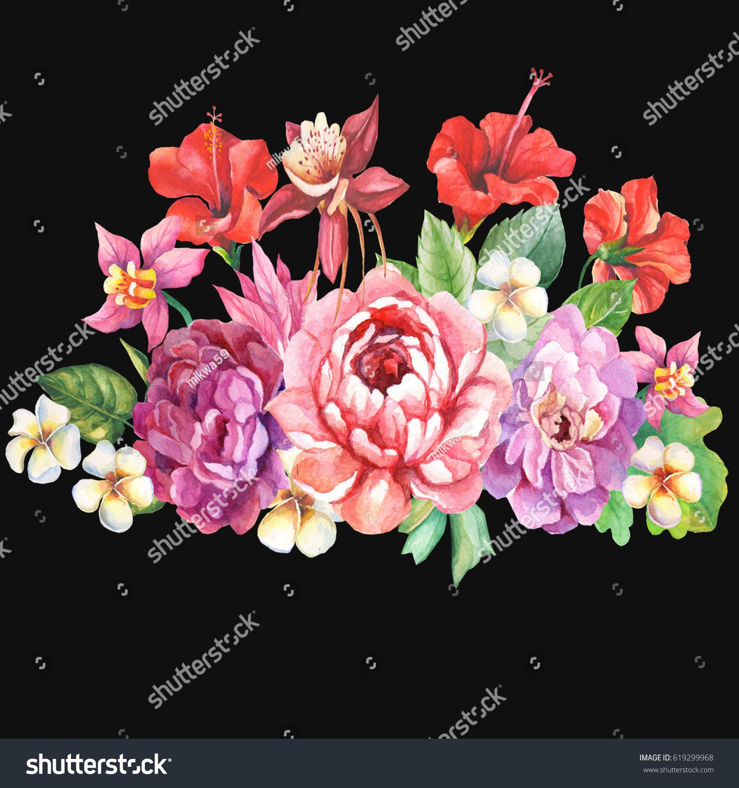 Beautiful tropical flowers on black background stock illustration beautiful tropical flowers on black background izmirmasajfo