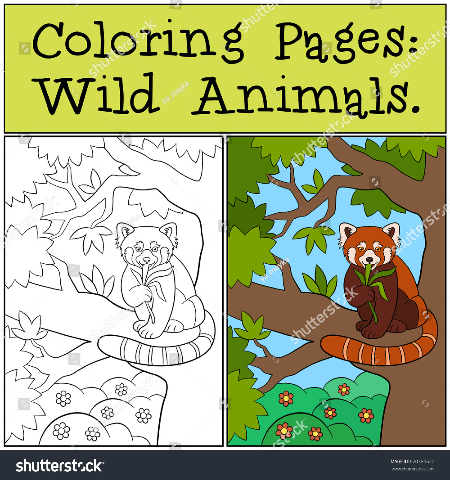 Coloring Pages Wild Animals Little Cute Stock Vector 620385620 ...