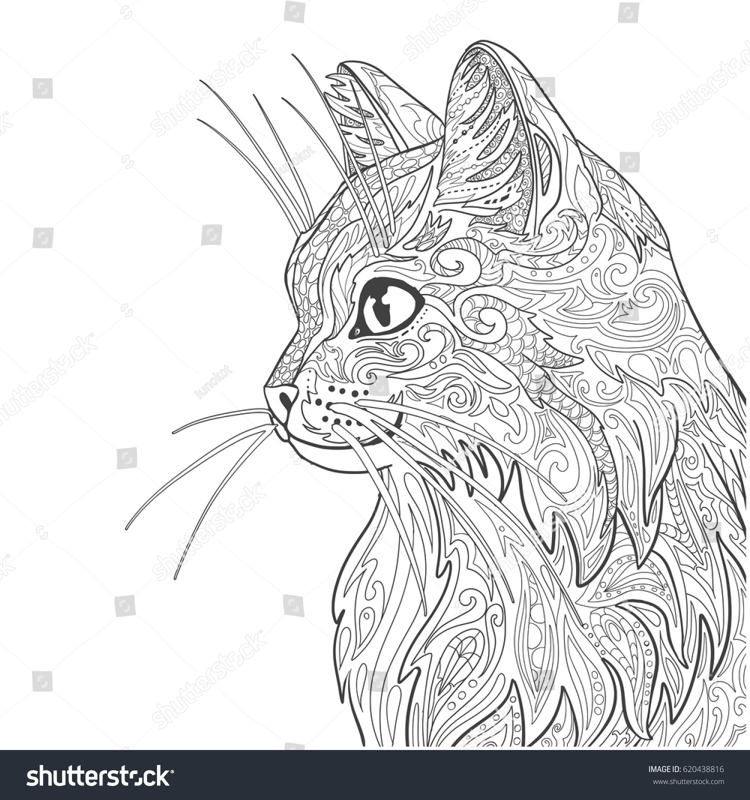 Cat Coloring Book Page Decorative Doodle Isolated On White