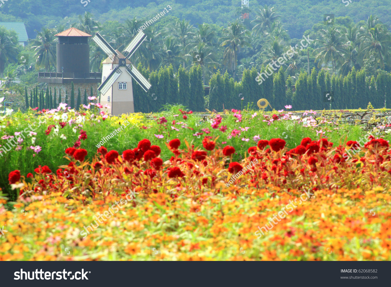 Windmill Netherlands Style Beautiful Flower Garden Stock Photo Edit
