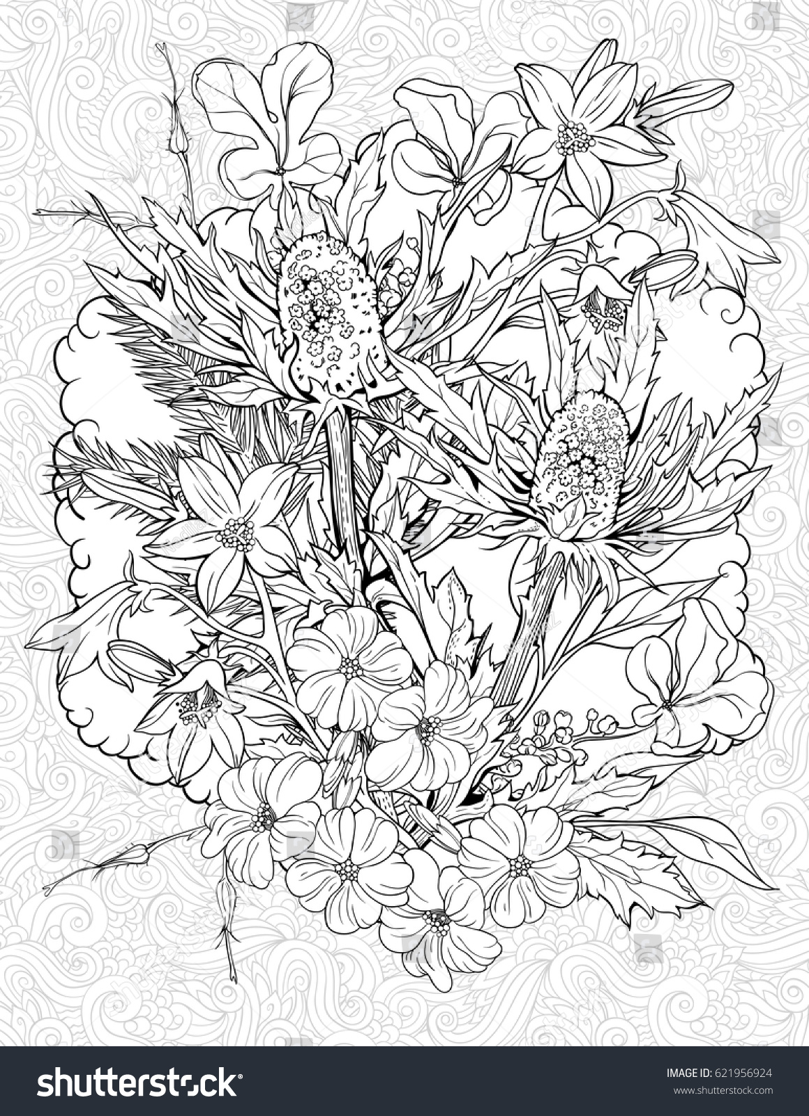 Floristic Coloring Page Flowers Burdock Stock Vector 621956924 ...