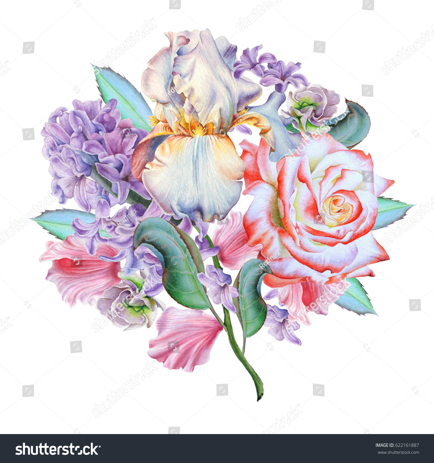Watercolor bouquet with flowers rose iris hyacinth illustration id 622161887 izmirmasajfo