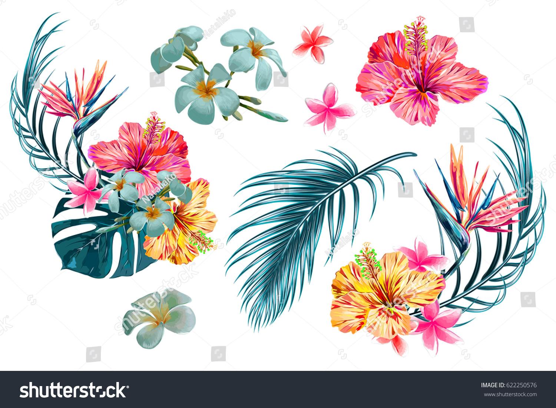 Vector Illustration De Fond Tropical Leaf Clip Art Libres De