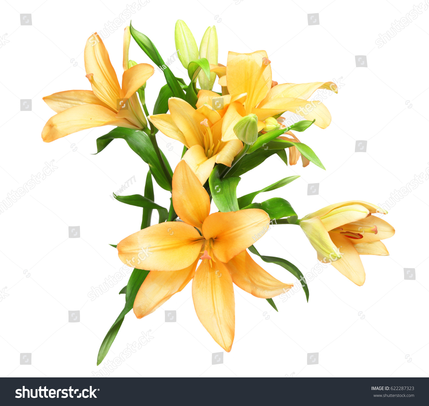 Bouquet Lily Stock Photo Royalty Free 622287323 Shutterstock