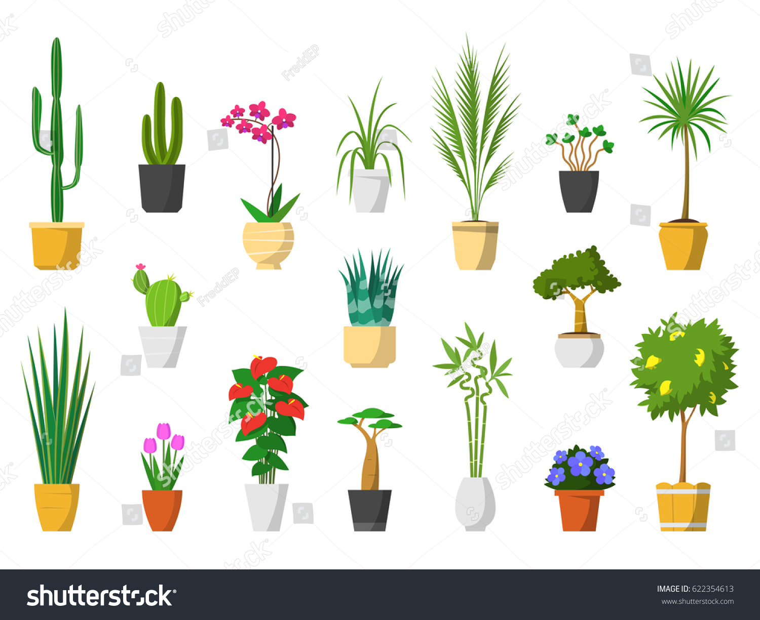 Big Set Of Indoor House Plants With Pot Isolated. Interior Plant, Vector,  Flat