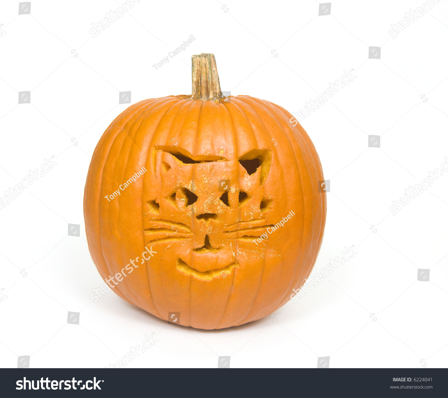 A cat face carved into a pumpkin for halloween stock photo for Cat carved into pumpkin