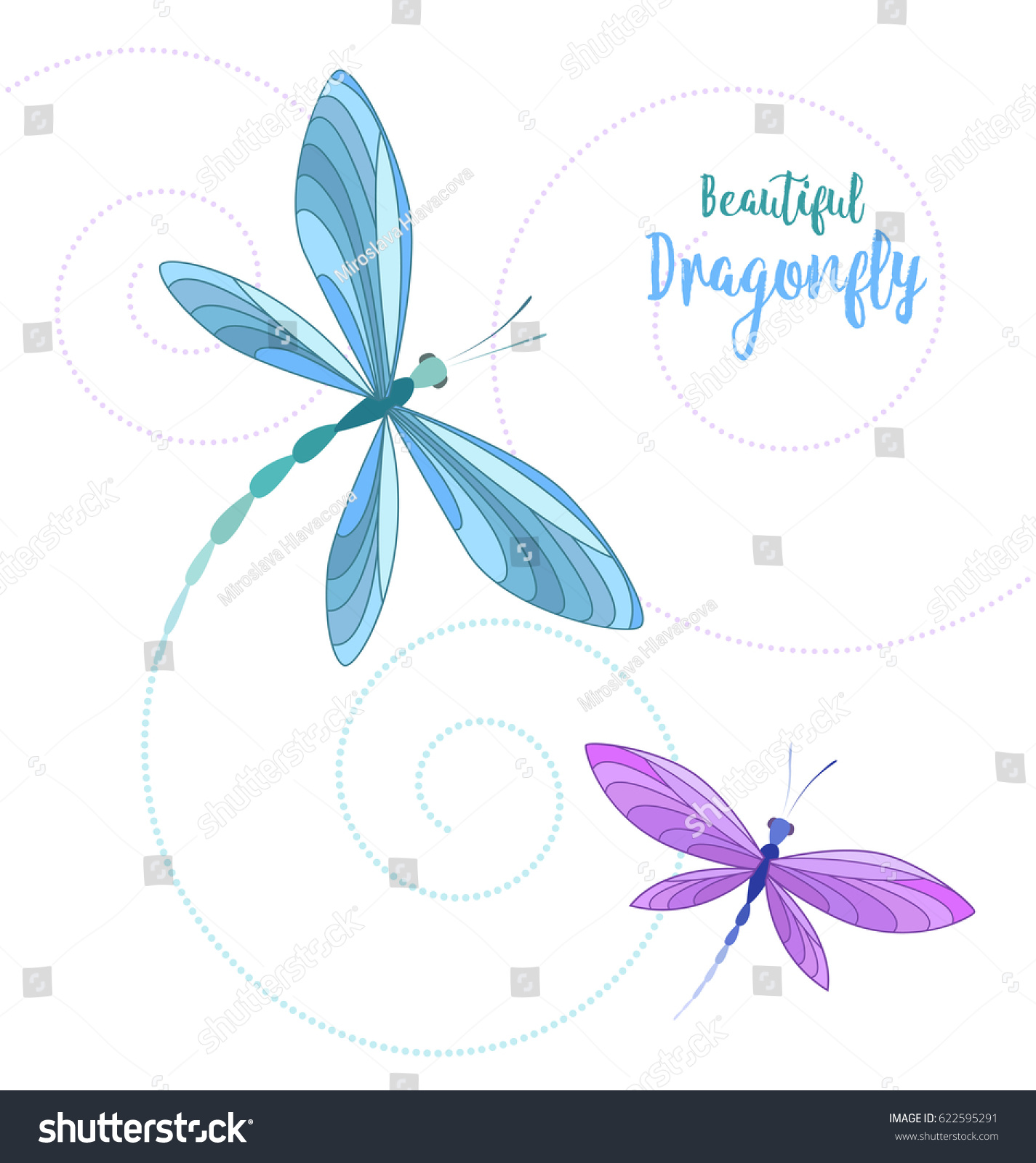 vector llustrace dragonfly on white background stock vector