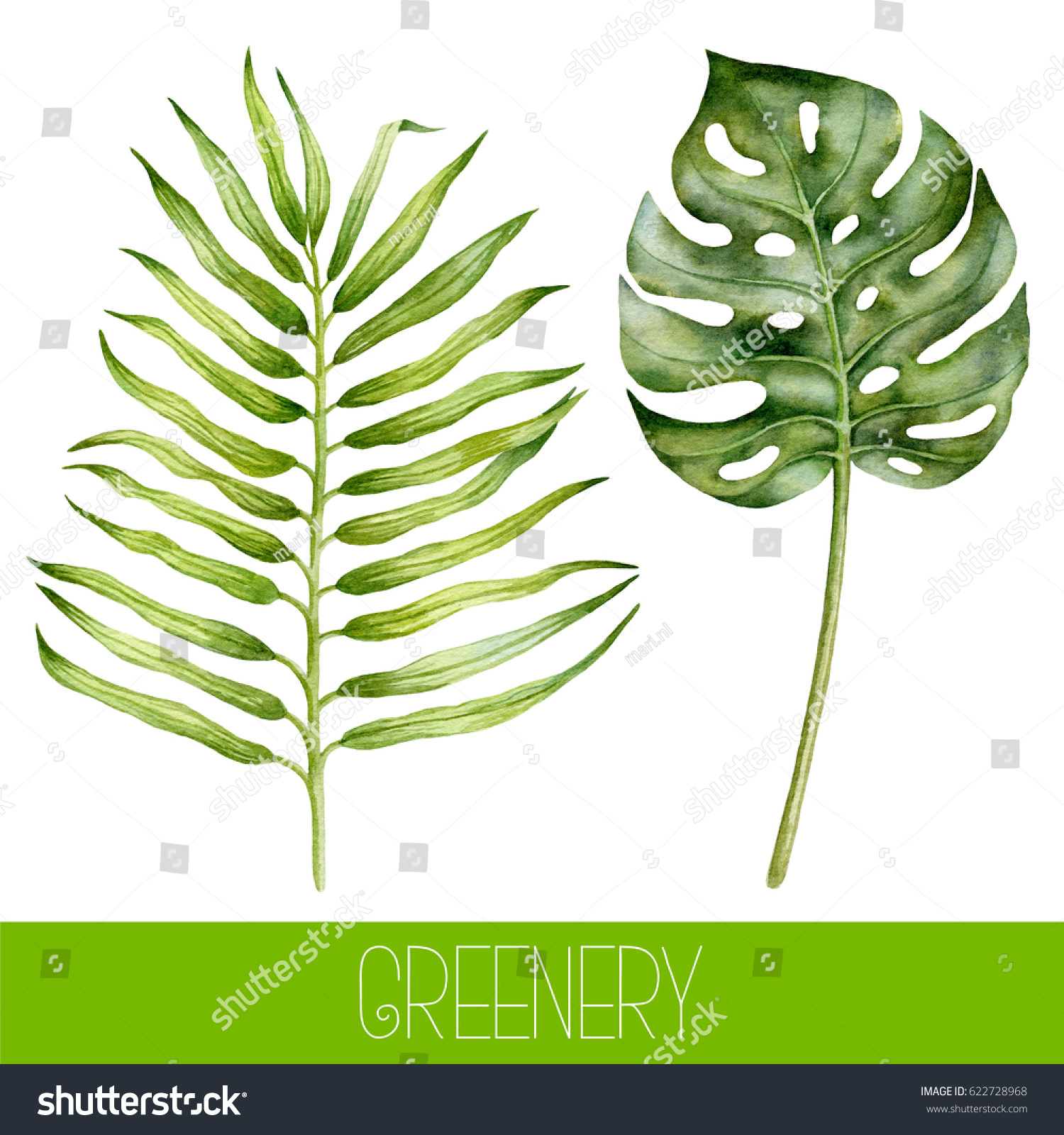 Set watercolor tropical leaves watercolor greenery stock for Watercolor greenery