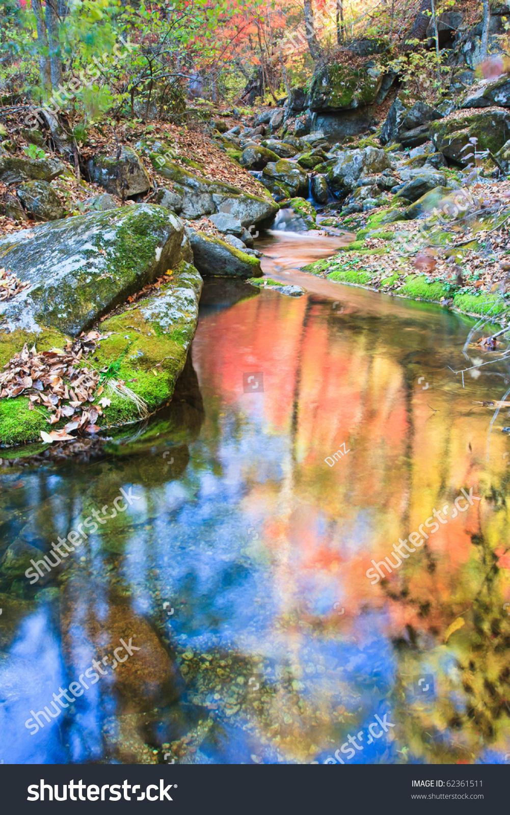 Autumn Landscape Beautiful Bright Autumn Trees Stock Photo ...