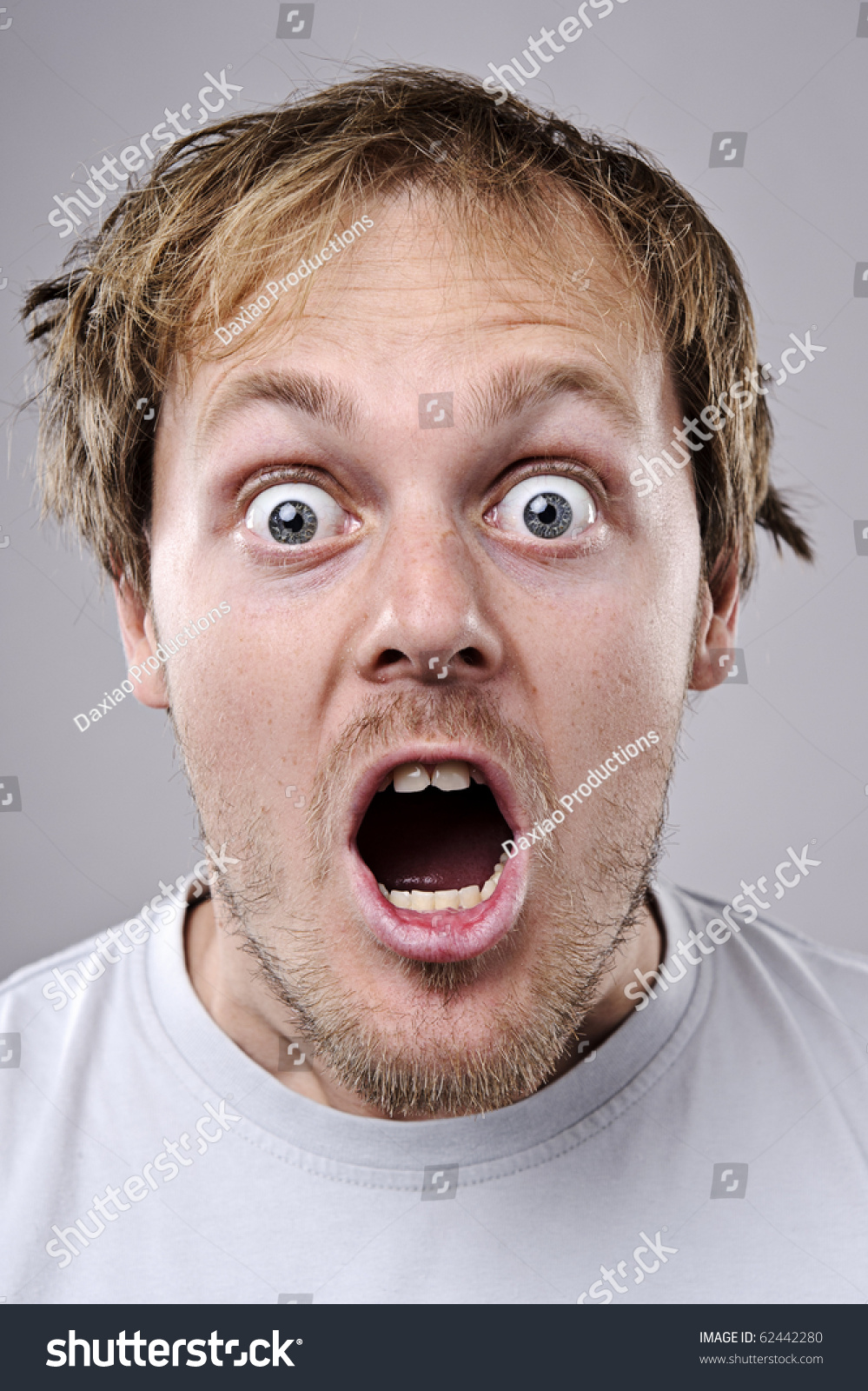 A real funny face captured in high detail - stock photo - stock-photo-a-real-funny-face-captured-in-high-detail-62442280