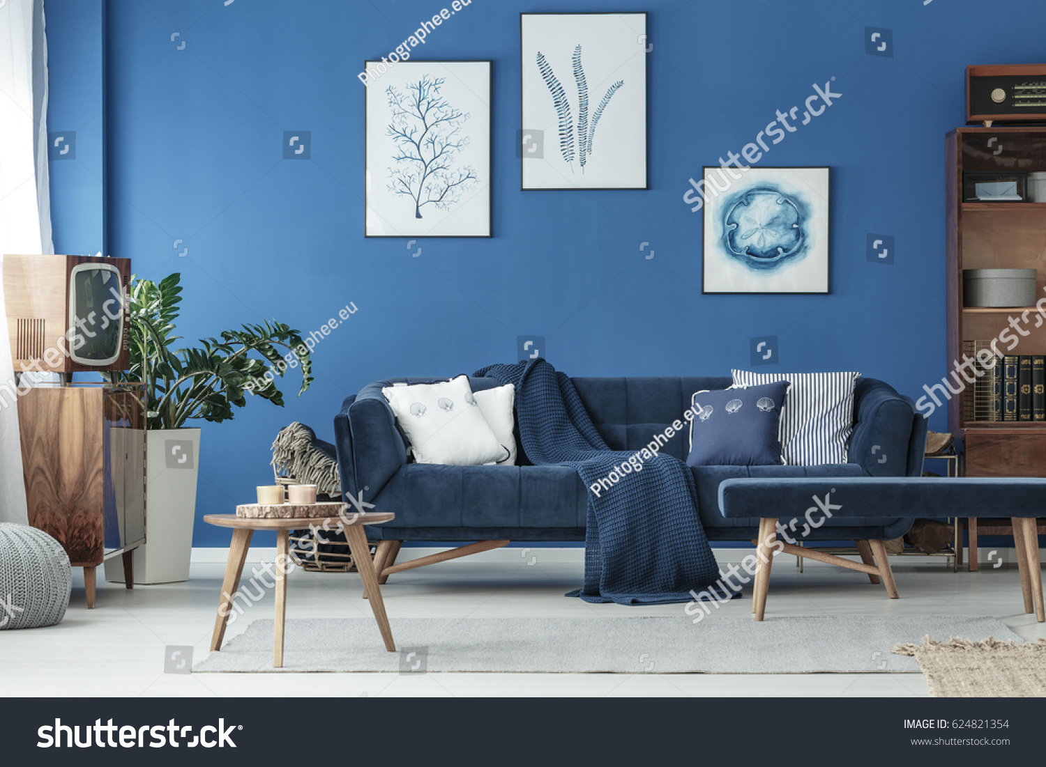 navy sofa living room. Cyan living room with navy sofa and wooden decoration Living Room Navy Sofa Wooden Stock Photo 624821354  Shutterstock