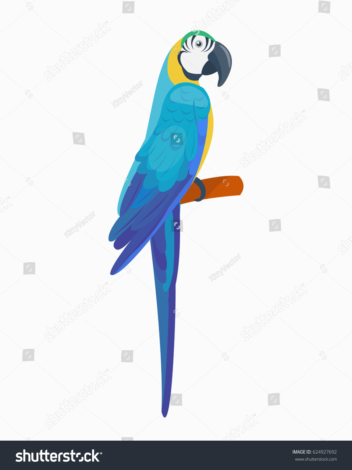Cartoon Tropical Parrot Wild Animal Bird Stock Vector Royalty Free Origamiorigami Macaw Parrotorigami Diagram Illustration Wildlife Feather Zoo Color Nature Vivid