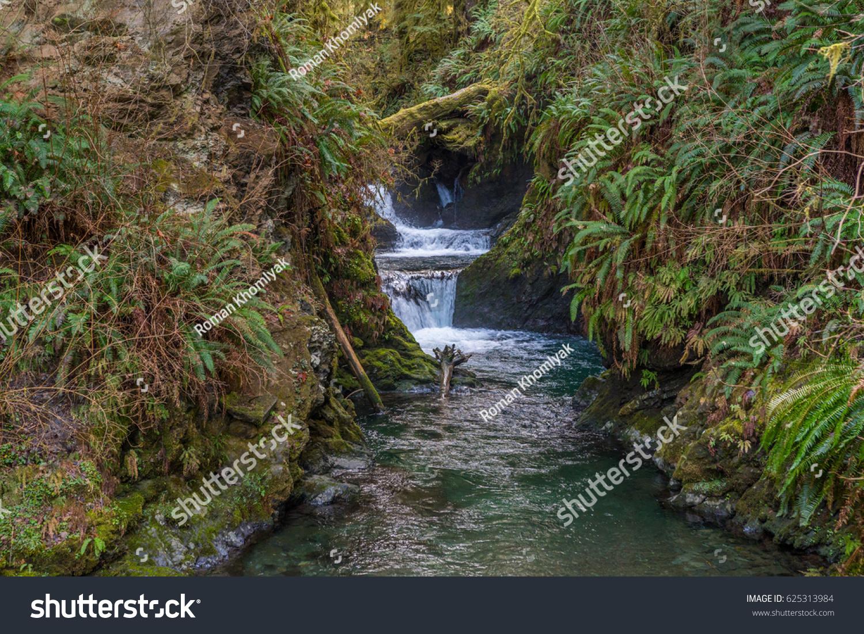 Buy Creek beautiful picture trends