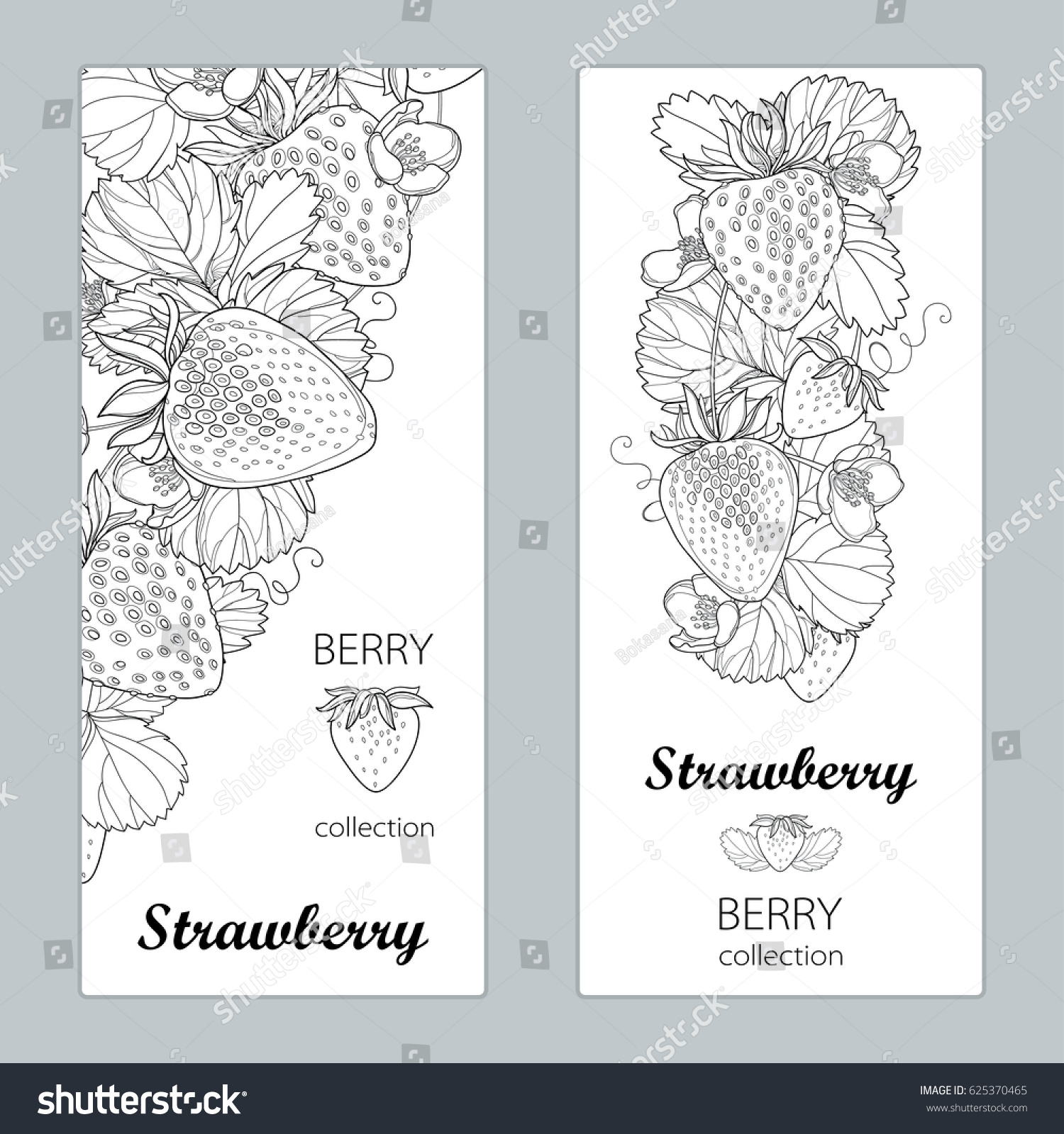 vector vertical templates outline strawberry berry stock vector