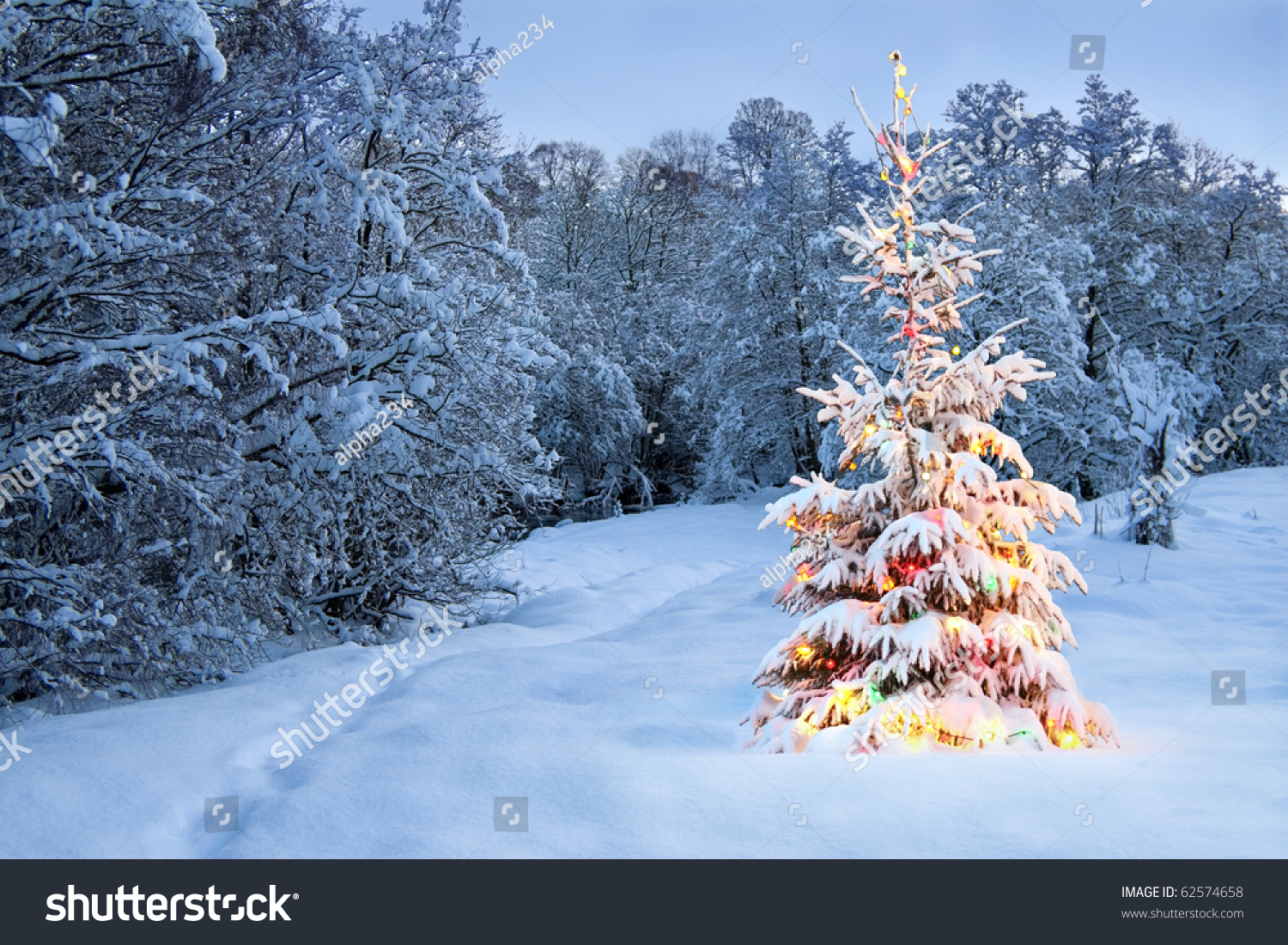 Christmas Tree In Snow With Colored Lights Stock Photo ...