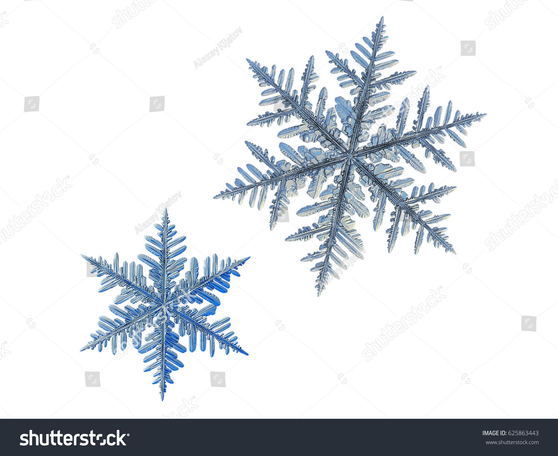 two snowflakes isolated on white background stock photo 625863443