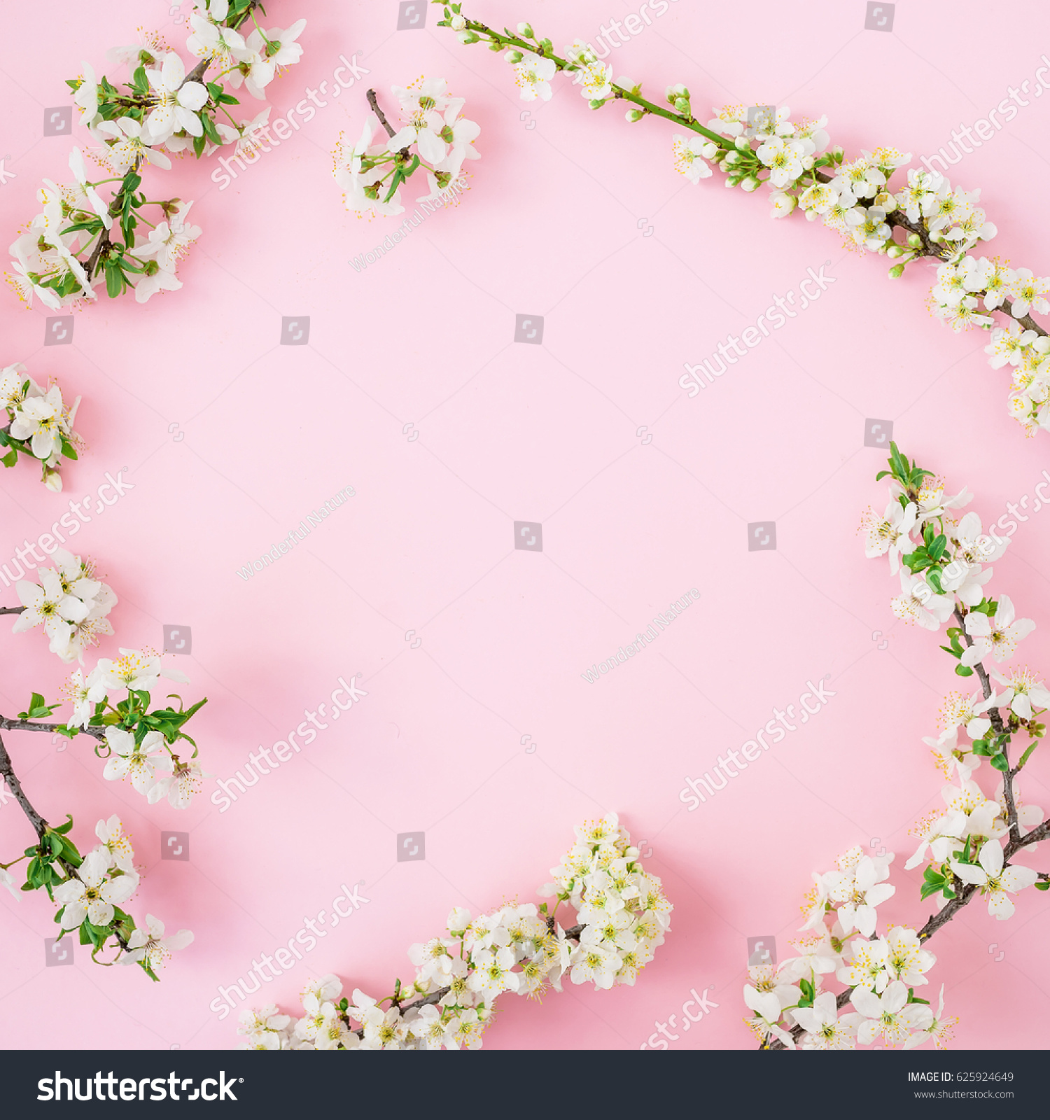 Spring Time Background Floral Frame Of Spring White Flowers On Pink