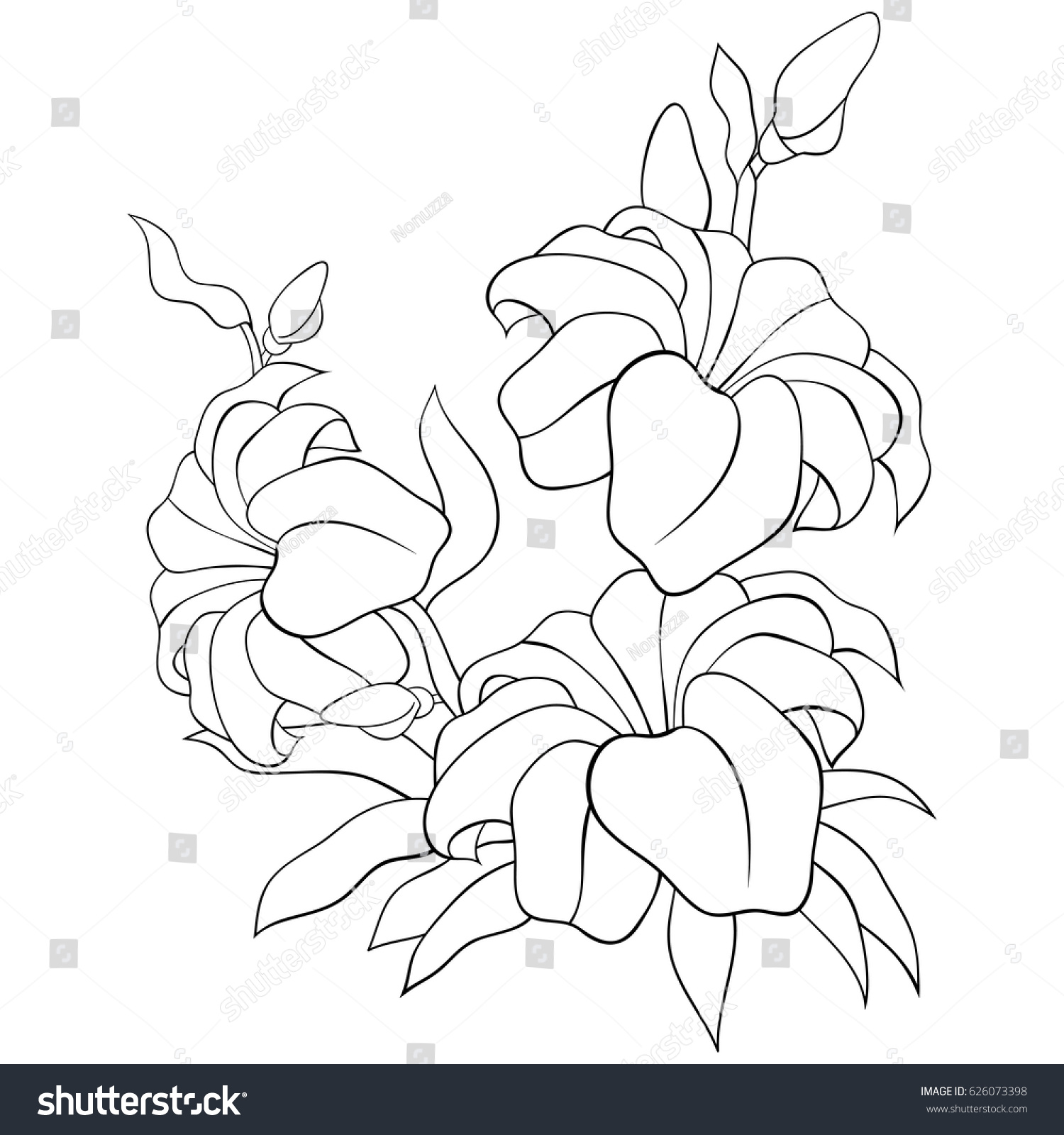 Adult Coloring Page Flowers Leaves Cute Outlines Stock Vector ...