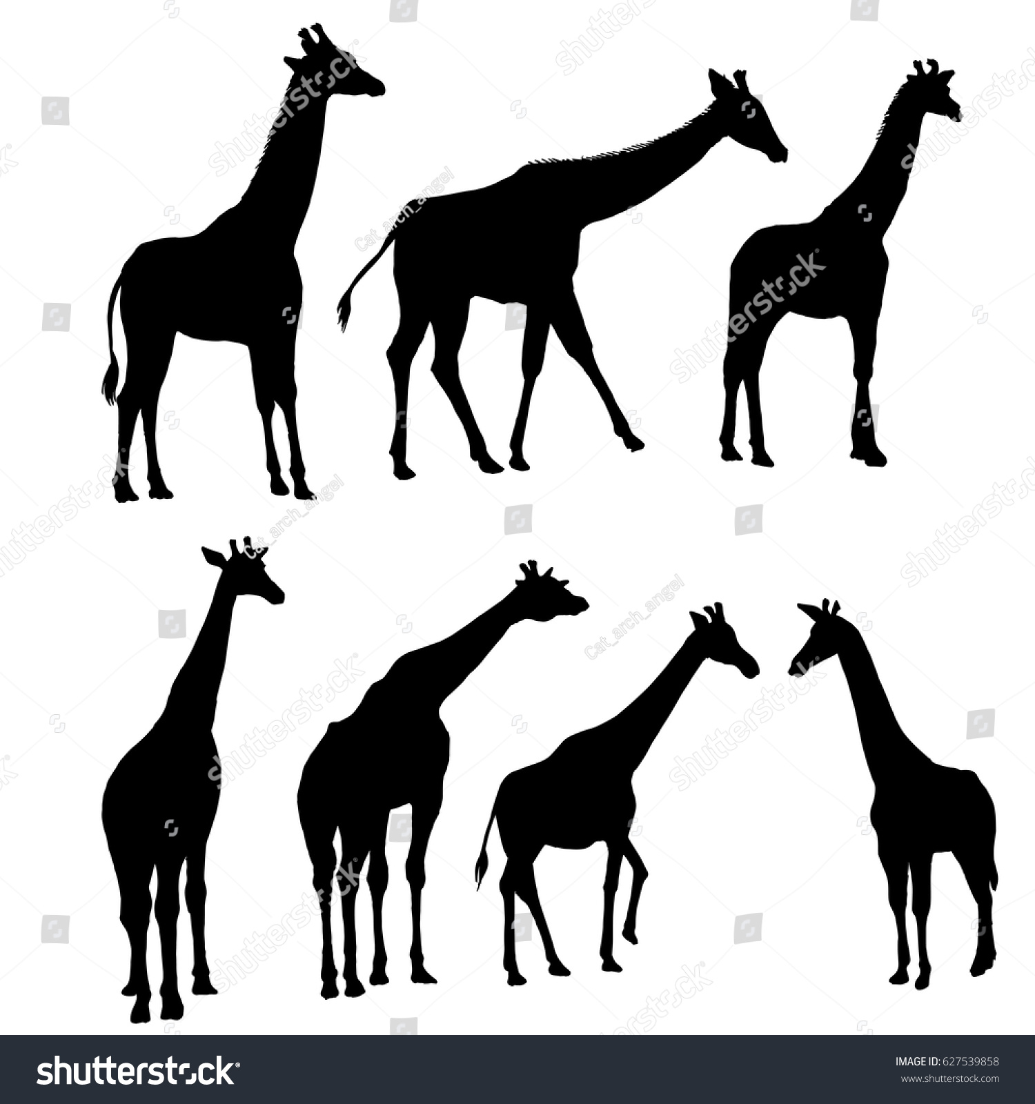 vector set giraffes silhouettes hand drawn stock vector 627539858