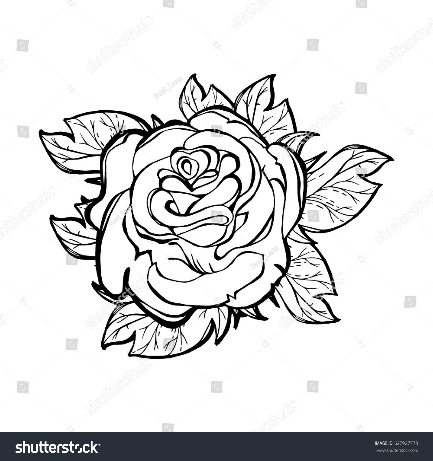 vector illustration of a stylized rose isolated tattoo textile printing image coloring - Coloring Book Printing