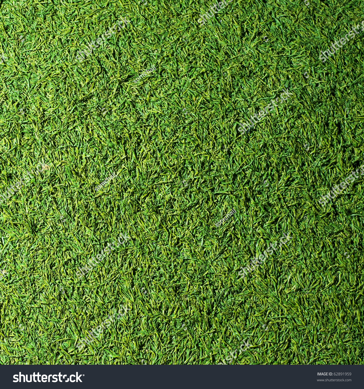Beautiful grass texture of golf course stock photo for Pretty grass